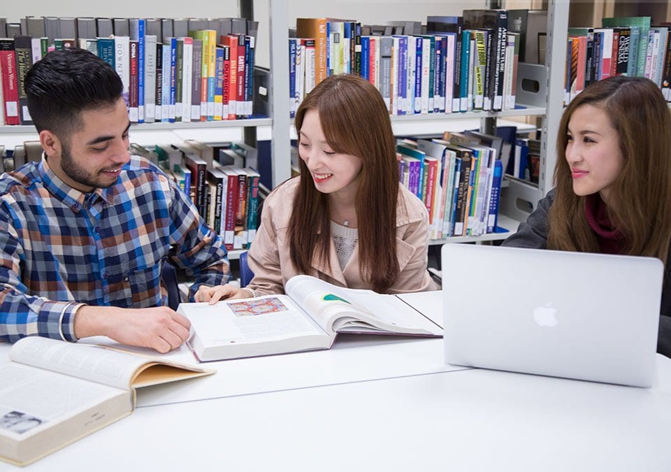 Group of Alexander College Students Studying