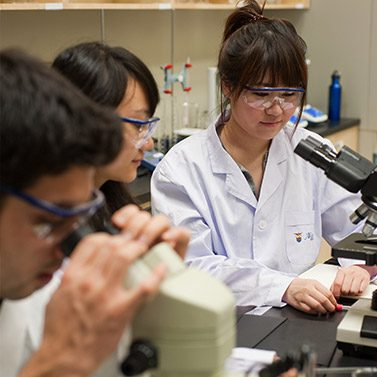 Students inside the science laboratory