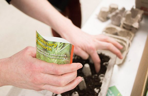 Student planting seeds in a recycled egg carton